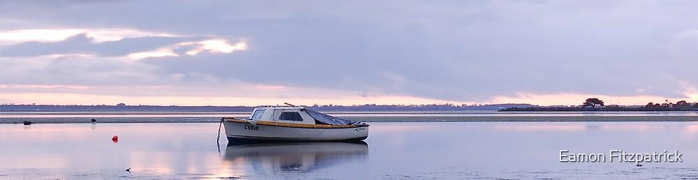 SWAN BAY, QUEENSCLIFF, VICTORIA, AUSTRALIA by Eamon Fitzpatrick