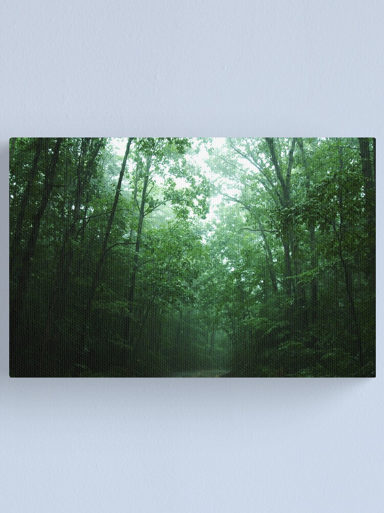 Alternate view of Trees Along The Path Canvas Print