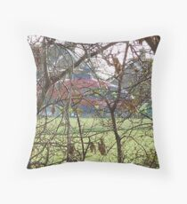 air ambulance Throw Pillow