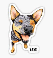 Australian Cattle Dog YAS, by Artwork by AK Sticker
