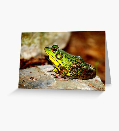 BULLFROG: King for a day...... Greeting Card