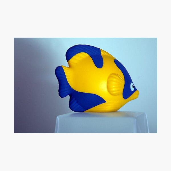 The Fish Photographic Print