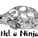 Not a Ninja by Benjamin Nunn