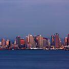 Beautiful San Diego by Jan  Wall