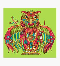 Owl, cool art from the AlphaPod Collection Photographic Print