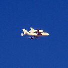 Space Shuttle Endeavor- Piggy Back Ride by R&PChristianDesign &Photography