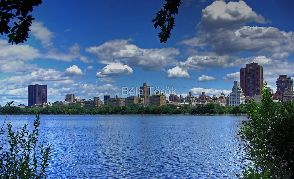 Central Park Reservoir by Béla Török