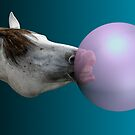 Horse Bubbles by Randy Turnbow