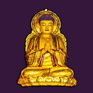 Beautiful buddha Statue by Dave  Knowles