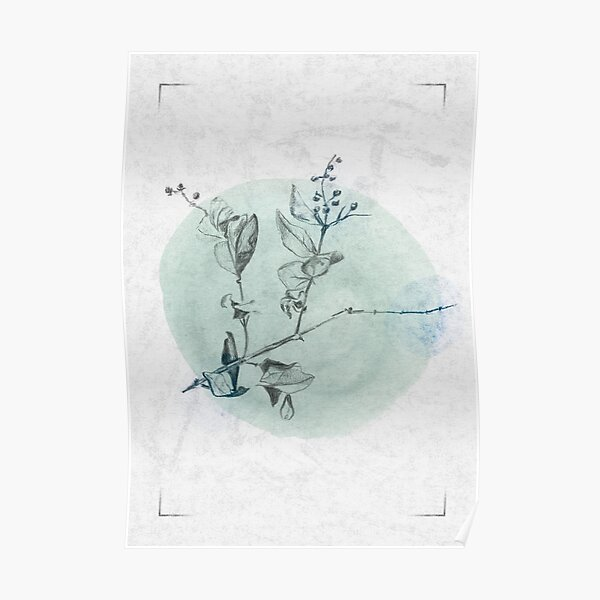 Delicate - Green and Blue Poster