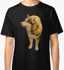 Malamute 01 Classic T-Shirt