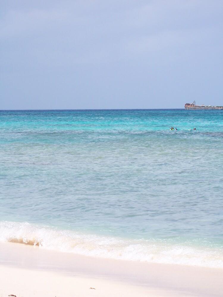 Grand Cayman Shoreline by hunter22375