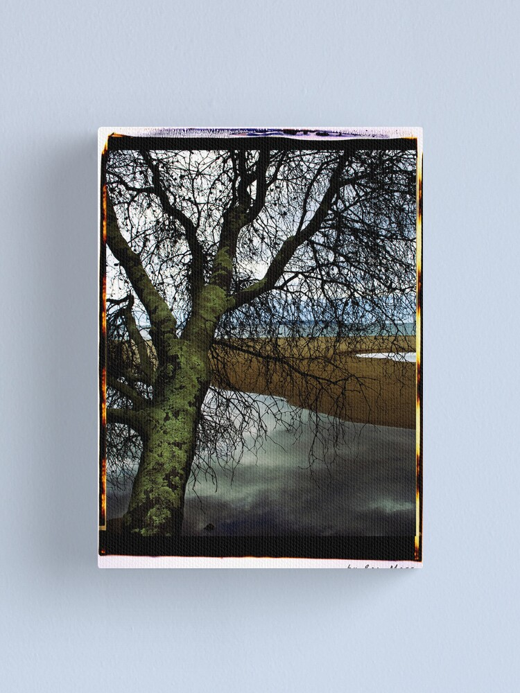 Alternate view of at the beach Canvas Print