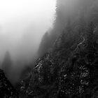 Dramatic Landscape by Imi Koetz