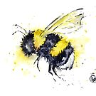 Bumble Bee - Buzz by Lisa Whitehouse