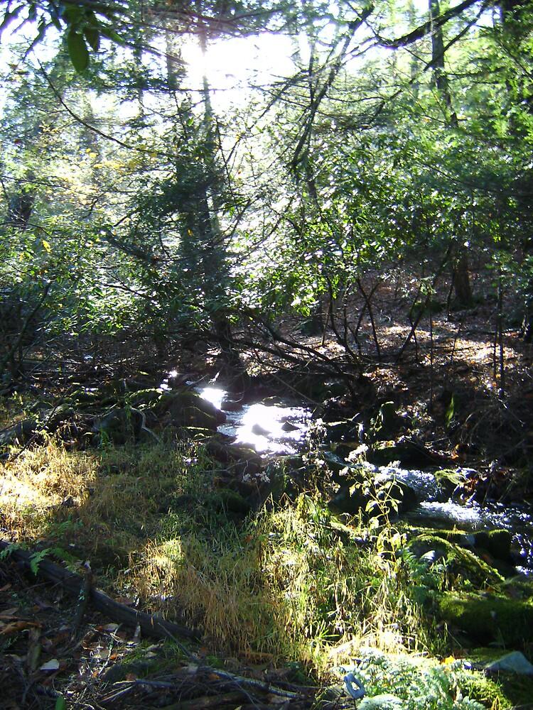 little stream by missingjosh