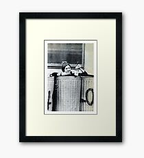 Carrie Fisher In A Bin Framed Print
