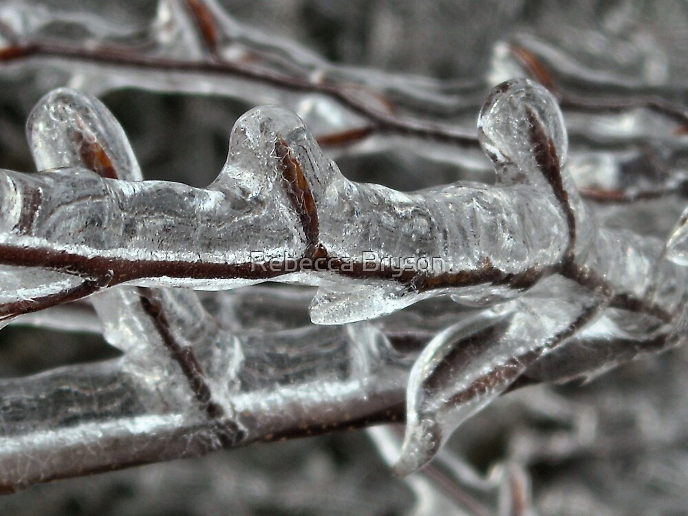 Encased in Ice by Rebecca Bryson