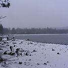 Donner Lake by NancyC