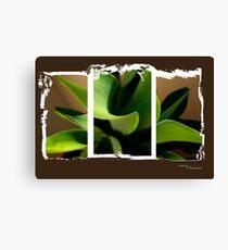 Tri Plant Canvas Print