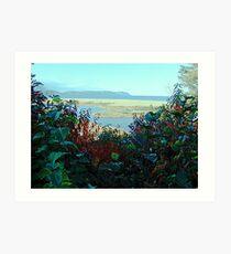 Cape North and Marshlands Art Print