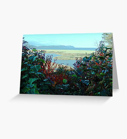 Cape North and Marshlands Greeting Card