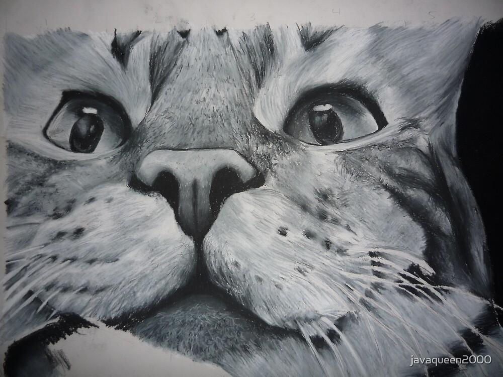 An proud Cat by javaqueen2000