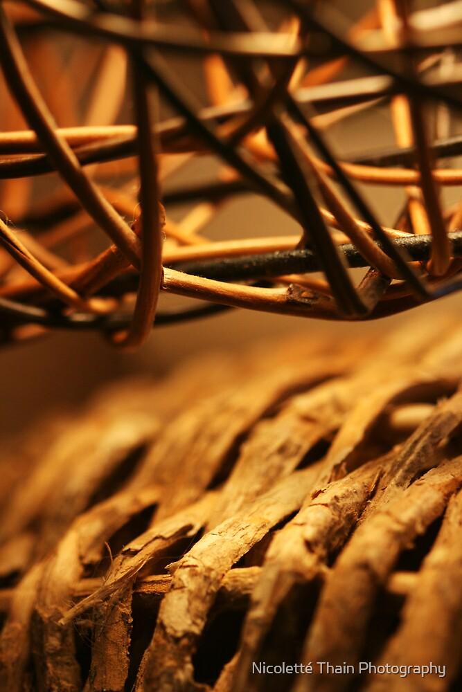fibre by Nicoletté Thain Photography