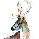 Fallow Deer by Lisa Whitehouse