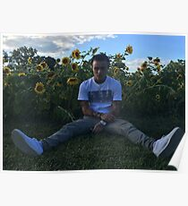 LIL SKIES HIGH QUALITY COVER / PHOTO / PICTURE SITTING IN SUN FLOWER FIELD  Poster