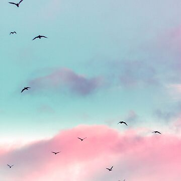 Birds Flying in Pink Sky's by banginT