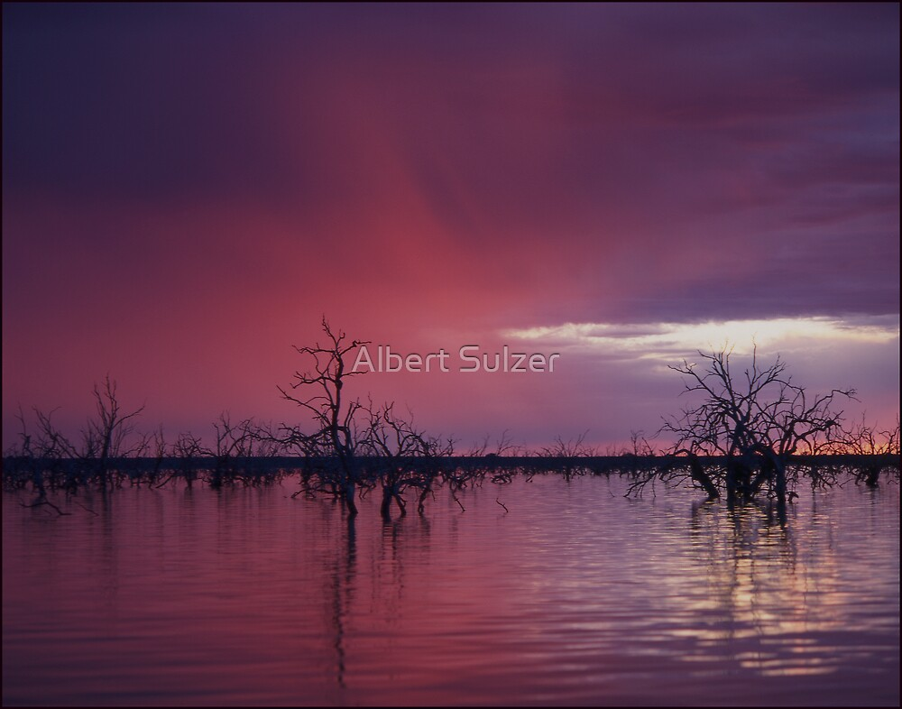 'After the Storm' Menindee Lakes-NSW by Albert Sulzer