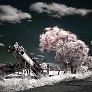 Windswept Lane by Ben Ryan