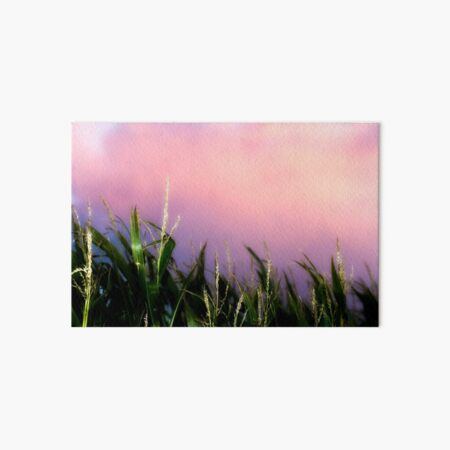 Sweet Corn Sunset Art Board Print