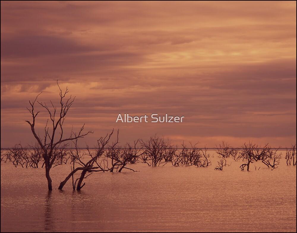 Menindee Lakes by Albert Sulzer