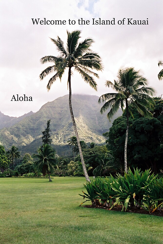 Welcome to the Island of Kauai by Dennis Begnoche Jr.