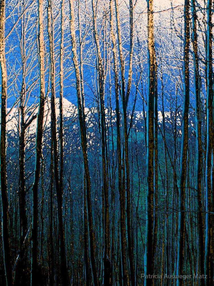 trees in blue by Patricia Ausweger Matz