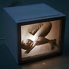 Trapped in a Box: Foetal by Mathew Reed