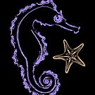 Seahorse and Starfish by evisionarts