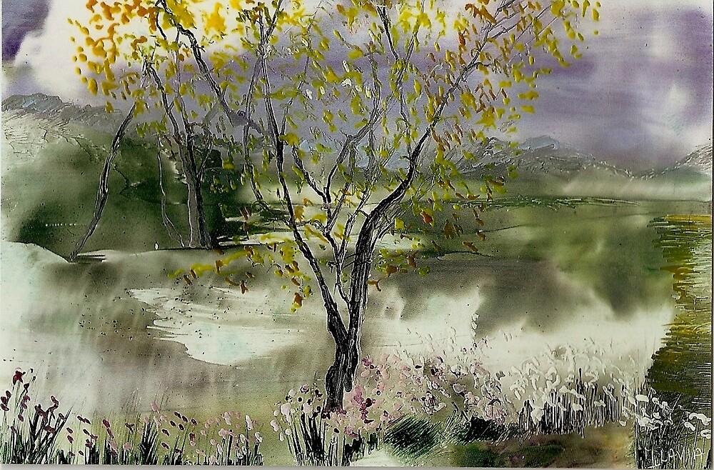 Lone Tree by Flavia
