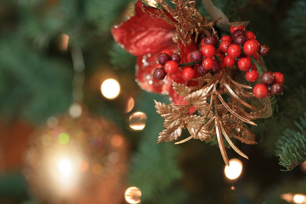 Christmas berries by malina