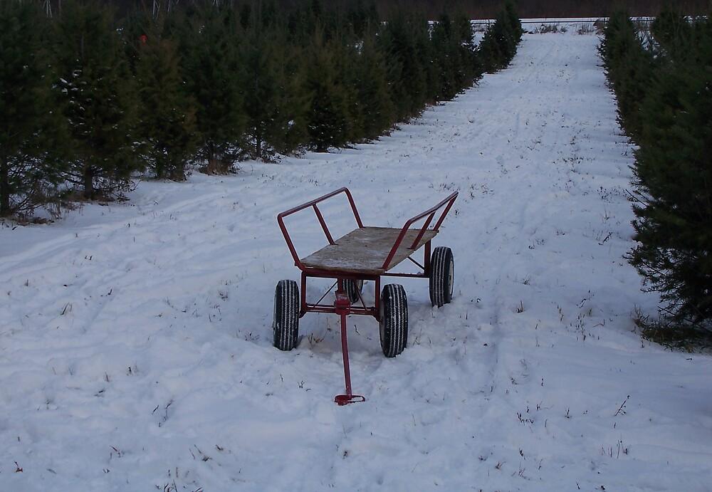 Christmas Cart by hunter22375