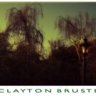 Eery Trees by Clayton Bruster