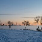 Deep Arctic Freeze in Toronto by Georgia Mizuleva