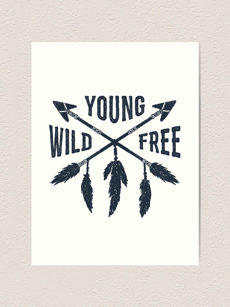 ARROWS feathers WILD FREE wall stickers 20 decals wall decor Native American