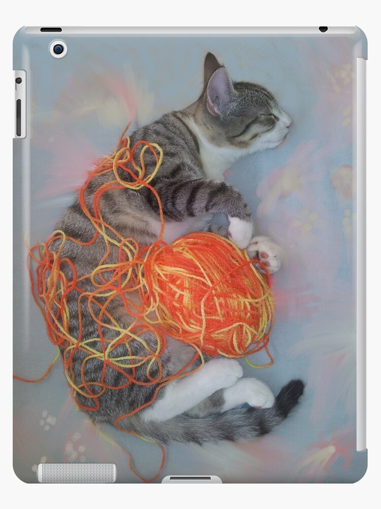 Naughty cat sleeping in yarn mess by alhne