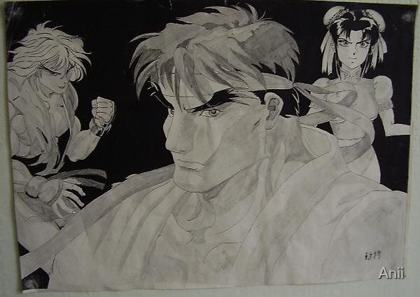 Street Fighter by Anii
