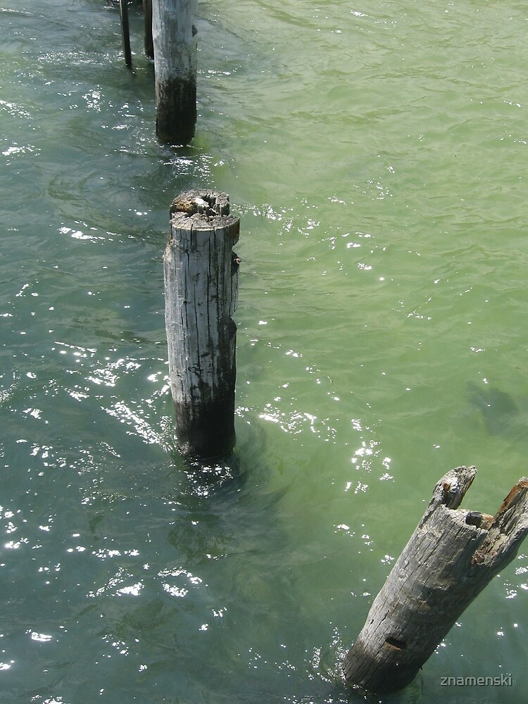 Old wooden piles sticking out of sea water by znamenski