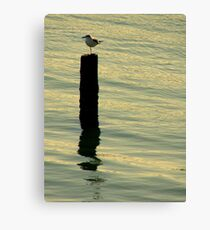 A Sunset Lover ~ Part Two Canvas Print