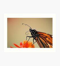 Proboscis Art Print
